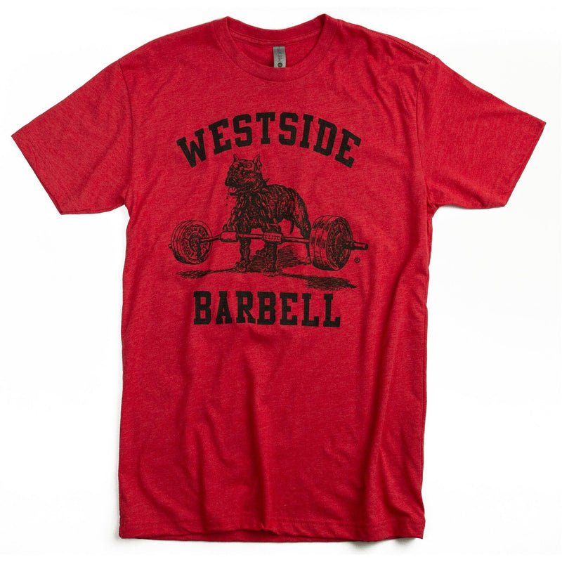 WSBB Mens Classic Gym T-shirt