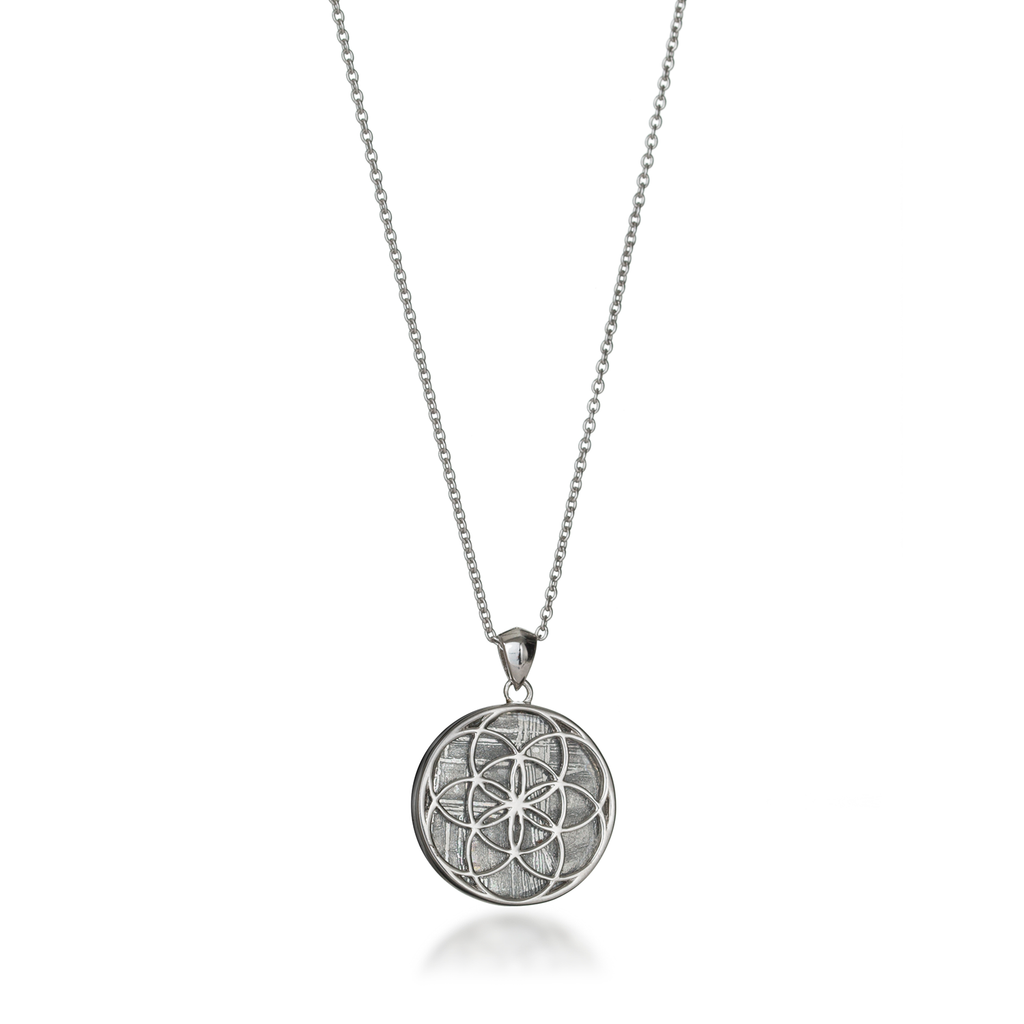 Seed of Life Silver Meteorite Necklace
