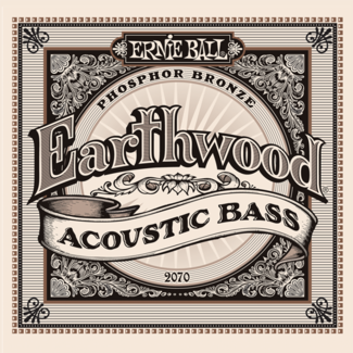 Ernie Ball Acoustic Bass Earthwood