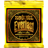 Ernie Ball Acoustic Everlast