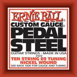 Ernie Ball Pedal Steel Guitar 10-String