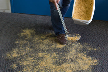 dry compound sprinkled on carpet