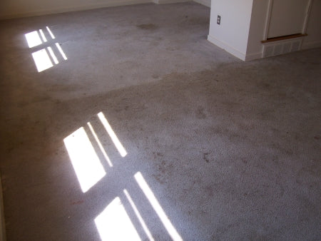 Carpet Cleaning Before Picture