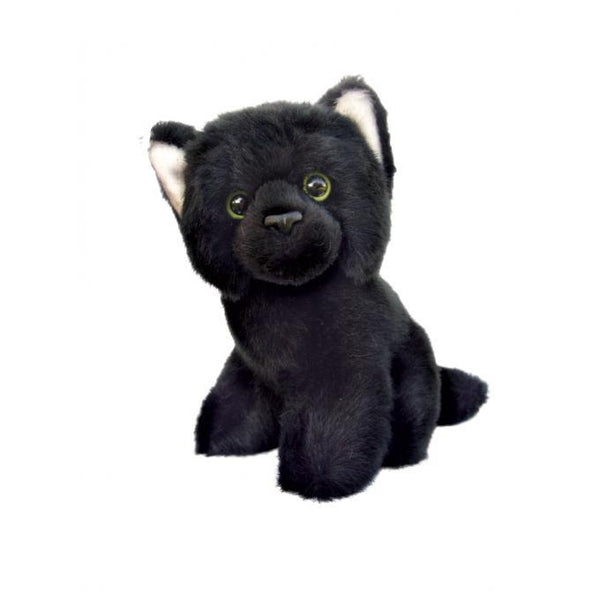 Spirit Earth 16cm Floppy Black Cat