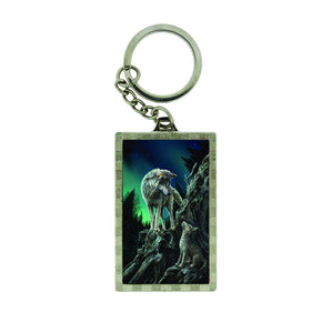 Spirit Earth 3d Guidance Keyring