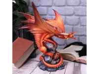 Spirit Earth Adult Fire Dragon (AS)