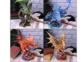 Spirit Earth All 4 Adult Dragons (AS)