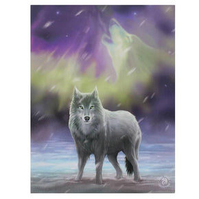 Spirit Earth Aurora Wall Canvas