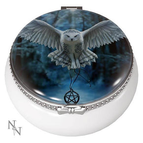 Spirit Earth Awaken Your Magic Trinket Box