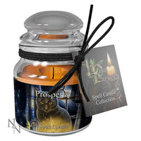 Spirit Earth Prosperity Spell Candle