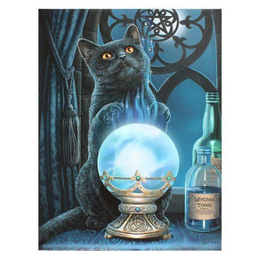 Spirit Earth The Witches Apprentice Wall Canvas