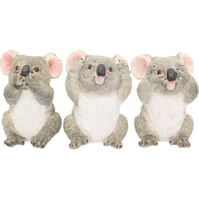 Spirit Earth Three Wise Koalas