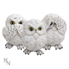 Spirit Earth Three Wise Owls