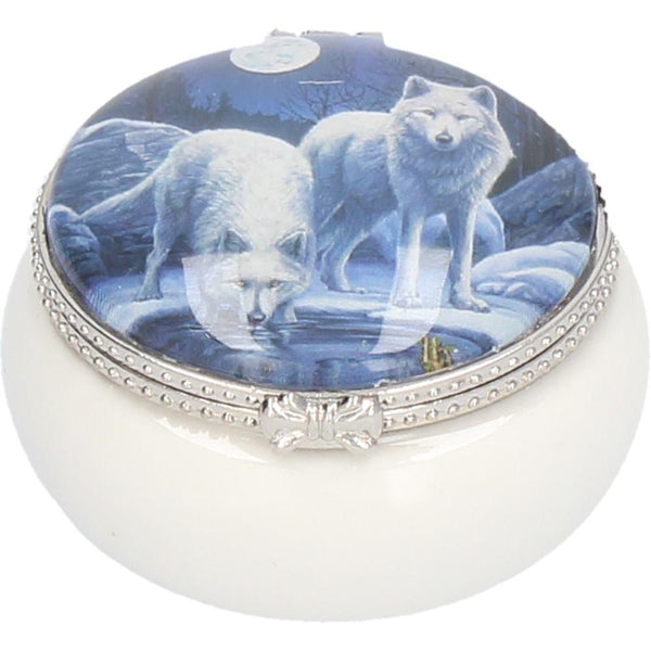 Spirit Earth Warriors of Winter Trinket Box