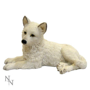 Spirit Earth Winter Wolf Pup