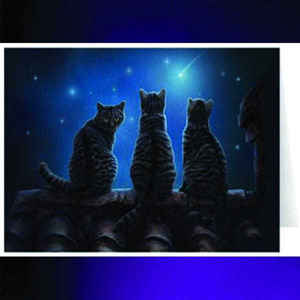 Spirit Earth Wish Upon a Star Greeting Card