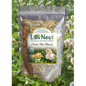 Luv Nest™ Chick Mix Blend
