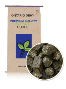 Ontario Dehy Timothy Balance® Cubes For Equine Nutrition