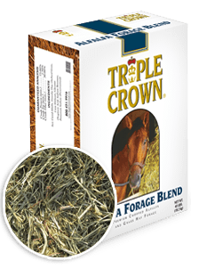 Triple Crown Alfalfa Forage 40lb
