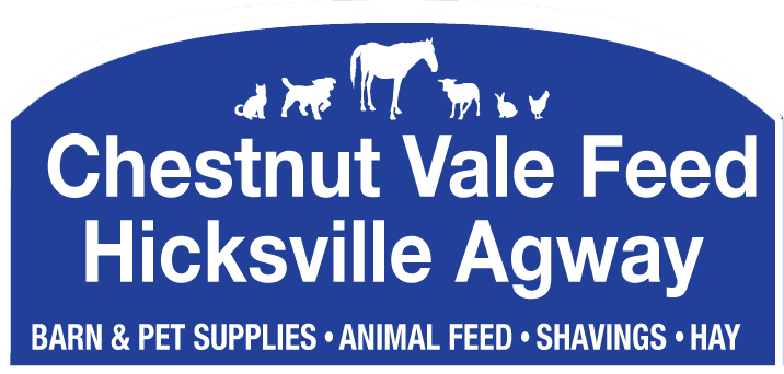 Chestnut Vale Feed