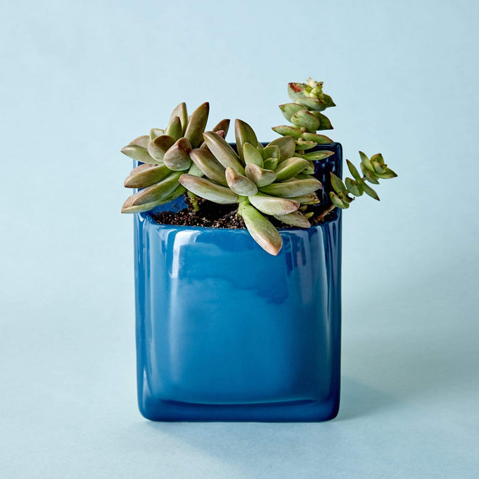 Ceramic Pocket Wall Planter