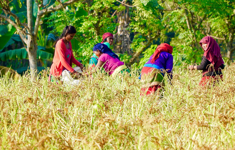 Artisan Fund Donation: Support Women in Sustainable Agriculture