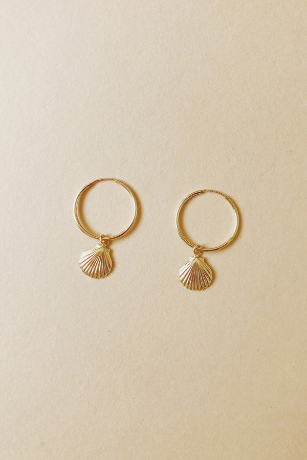 14k Seashell Hoops