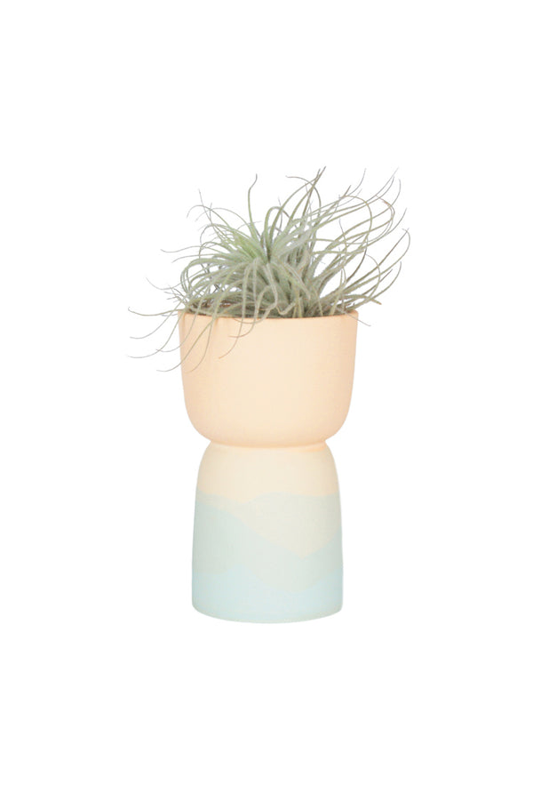 Sunset Pedestal Planter (Curbside Pickup Only)