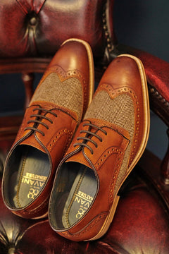 Cavani Cavani William Tan Tweed Brogues £59.99