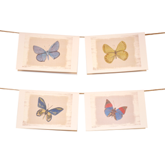 Dale Hill's Butterfly Collection Stationery Set of 8 - Blues - lovingkindness - 1