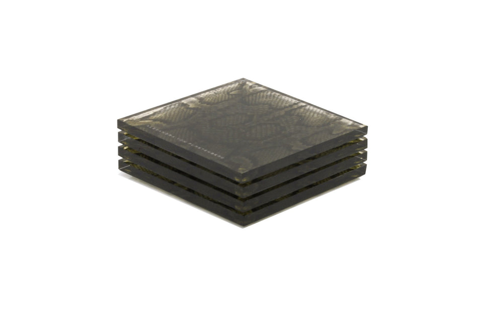 Coaster Set in Snakeskin Print