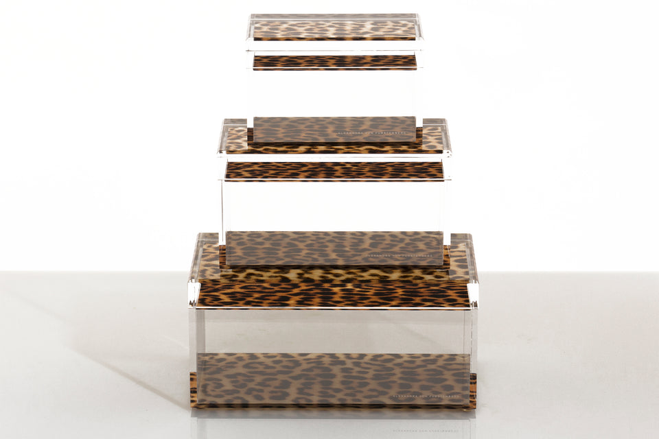 Treasure Box in Leopard Print