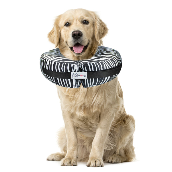 Zebra - Pet Recovery Collar