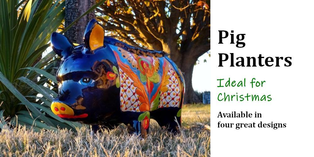 Pig Planters Make Ideal Gifts For Christmas Or Birthday