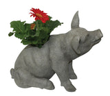 Perfect Garden Pig Planter!! Sophia Home Accents & Design