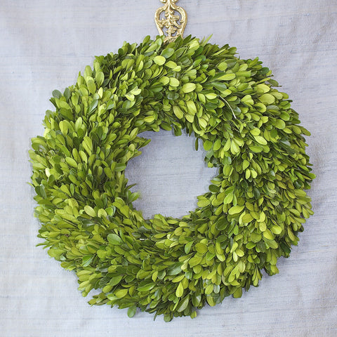 SK Collection Floral Wreath I Plain Boxwood