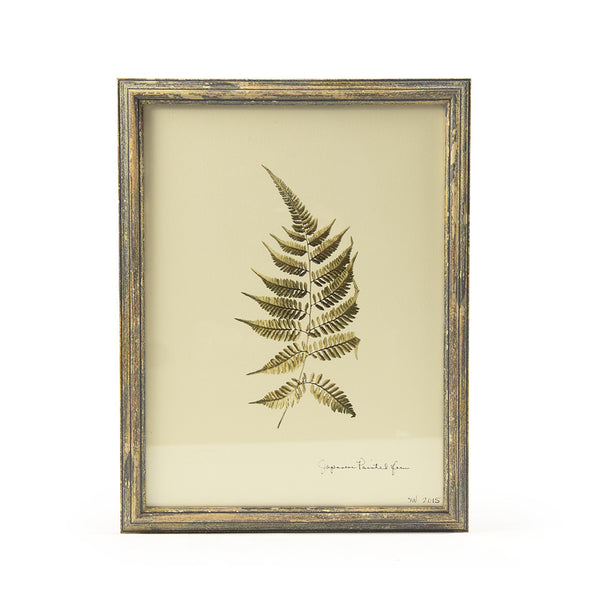 Botanical Gold - Japanese Painted Fern Wall Art Print