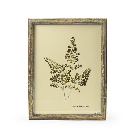 Botanical Gold - Maidenhair Fern Wall Art Print