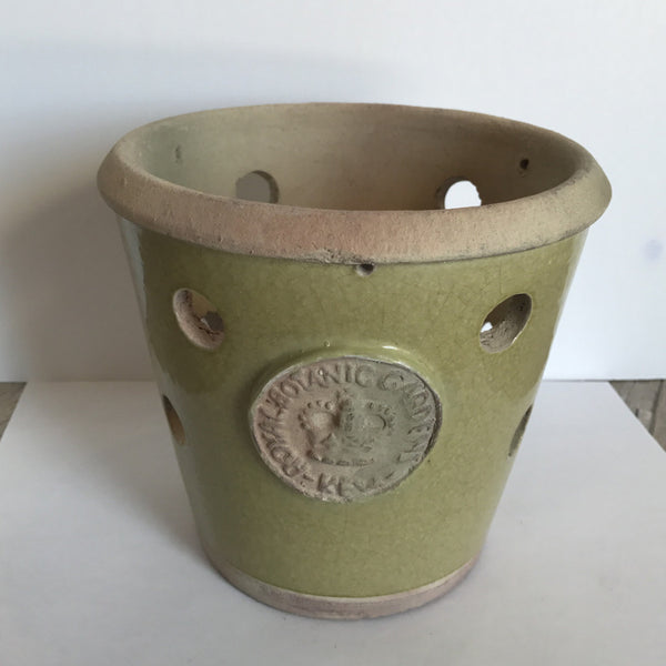 French Crown Orchid Planter Pot