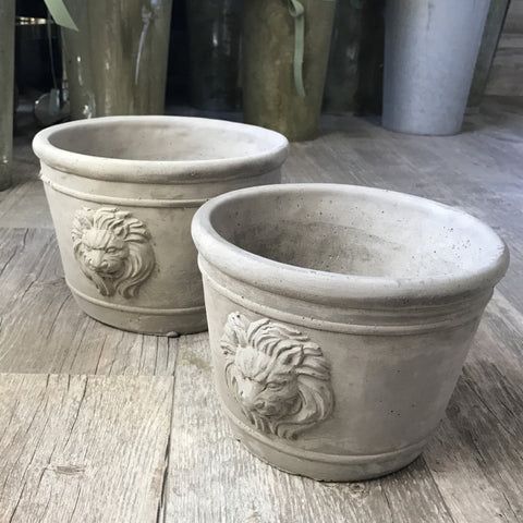Cement Planter Lion - Large
