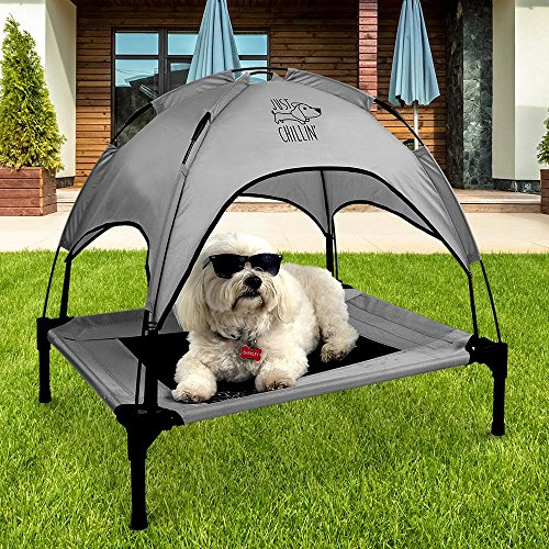Dog Cot With Canopy