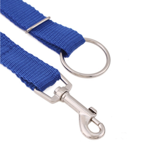 Instant Trainer Dog Leash