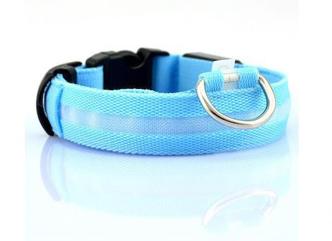 Dog and Cats - LED Glow In The Dark Collar