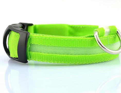 LED Glow in the Dark Collar for Dogs and Cats