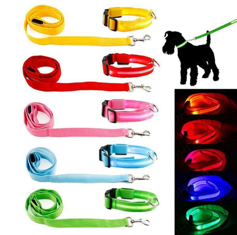LED Glow in the Dark Collar and Leash Combo