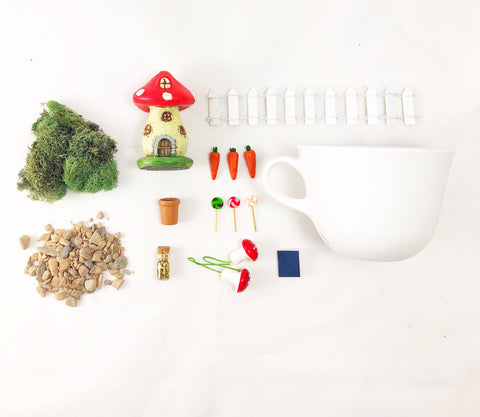 Teacup Fairy/Gnome Garden Kit