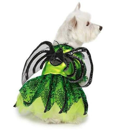 Zack & Zoey NEON SPIDER PRINCESS Costume