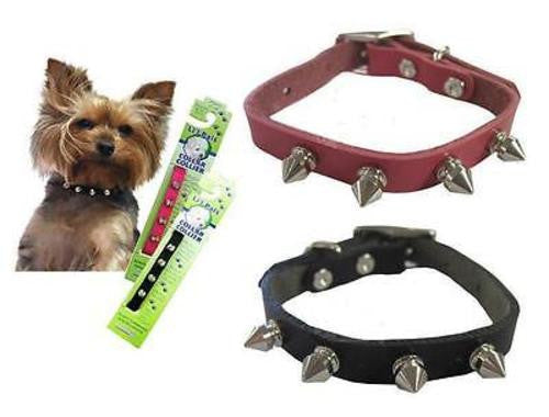 Coastal Lil' Pals TINY SPIKED LEATHER COLLAR