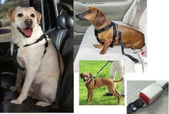 Cruising Companion CAR SAFETY HARNESS
