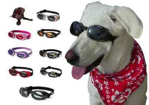 Doggles ILS Dog Goggles